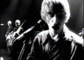 Paul Weller The Weaver