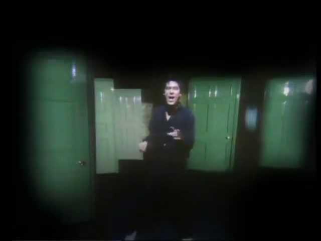 Shakin' Stevens – Green Door