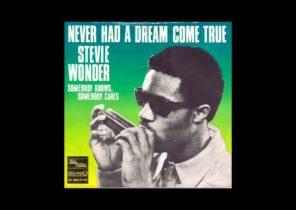 Stevie Wonder Never Had A Dream Come True