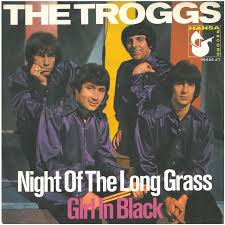 The Troggs – Night of the Long Grass