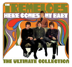 The Tremeloes – Here Comes My Baby