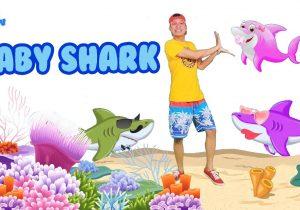 Baby Shark Nursery Rhymes Bibu TV